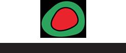 logo-energieinstitut