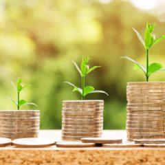 Bild zeigt Münzen mit einer Pflanze auf jeden Stapel, wird verwendet für das Thema Kostenvergleich; copyright Pixabay