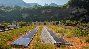 Gründach und Photovoltaik kombinieren - so wird's gemacht